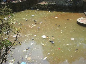 polluted pool